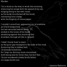 """""""Murder,"""" a poem about the fragility of life and the tragedy of hitting a bird on the way to work. Read more poetry by Leanne Rebecca on shesinprison.com"""