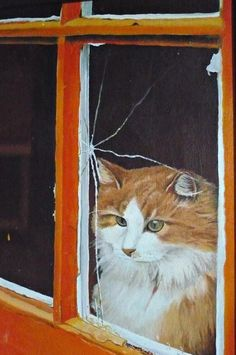 Calico-oil painting by Mary Clare