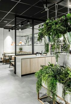 Indoor Garden Office and Office Plants Design Ideas For Summer 65 Cafe Interior, Office Interior Design, Office Interiors, Office Ceiling Design, Nordic Interior, Office Designs, Interior Paint, Office Plants, Garden Office