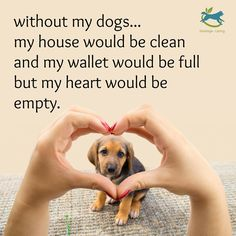 In today's quotes session you are going to view Best Animal Lover Quotes That touch your Heart. Pets are our friends so we think to hit them. All Dogs, I Love Dogs, Puppy Love, Cute Dogs, Animal Lover Quotes, Lovers Quotes, Dachshund Quotes, Dog Quotes, Dog Sayings