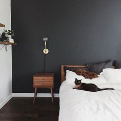 Simple, lovely spaces #Lsconce #schoolhouseelectric (via @ourdarlingdoodle)