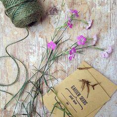 Continua la raccolta dei semi. Adoro le mie bustine preparate con la #bigshot è personalizzate con i miei timbri. Li potete trovare in vendita nello shop di @ilcastellodizucchero Buon Ferragosto!  #myhardenwood #instagarden #gardenblogger #stamps #gardenstamps #seeds
