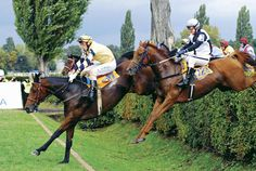 Considered the toughest jump in Europe's toughest steeplechase, the Taxis is a 5-foot hedge with a huge ditch lurking behind. Photo courtesy Pardubice Racetrack.