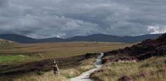 Ballycroy, paseando por los páramos irlandeses - http://www.absolutirlanda.com/ballycroy-paseando-por-los-paramos-irlandeses/