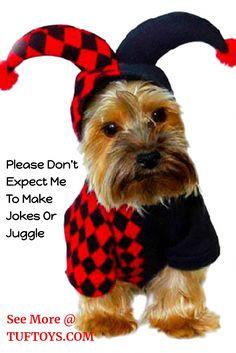6a92d0e59a54 Funny Dog Costumes - TufToys.com– Big  amp  Tough