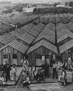 "Following the 1906 San Francisco earthquake, the army built 5,610 ""relief houses"" to accommodate 20,000 displaced people. The houses were grouped in eleven camps, packed close to each other and rented to people for two dollars per month until rebuilding was completed."