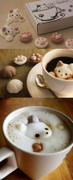 Cat in your coffee?
