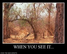 Posters - when you see it...