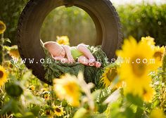 one of my very favorite newborn photo's of all time! so gorgeous!