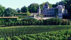 Bordeaux Wine Regions 25 Great Places to Visit in France The Places Youll Go, Great Places, Beautiful Places, Places To Visit, Chateau Bordeaux, Bordeaux 3, Rando Velo, Bordeaux Wine Region, Bordeaux Vineyards