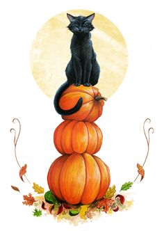 #halloween #pumpkins #black_cat  by Hannah on Tumblr