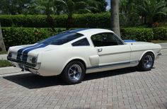 1966 Ford Mustang Fastback Shelby GT 350