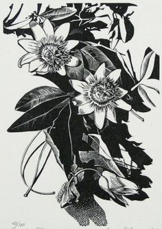 Leon Gilmour (American, 1907-1996). Passion Flower. (wood engraving)