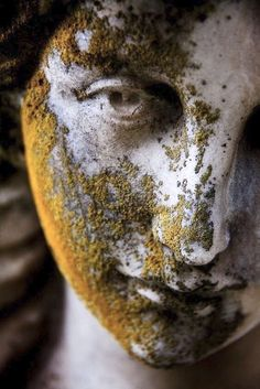 Face of angel statue covered in moss. … - architecture and art - Face of angel statue covered in moss. Cemetery Angels, Cemetery Statues, Cemetery Art, Statue Ange, Art Inspo, Sculpting, Art Photography, Face, Artwork