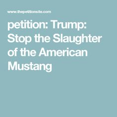 petition: Trump: Stop the Slaughter of the American Mustang