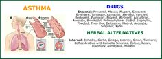 Herbal alternatives to asthma treatment are many. Asthma, Turmeric, Drugs, Herbalism, Alternative, Herbal Medicine