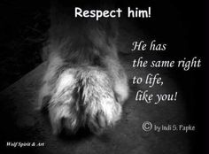 Respect Him