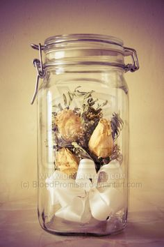 dry flowers in the jar