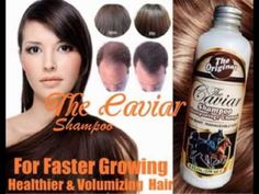 Agen Jual Shampoo Kuda Denpasar 085799968786