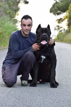 #spiritguardian #rothorm #sanroccocanecorso #canecorsopuppy #nicestcanecorso #canecorsopuppiesforsale Here is alpha with Bruno in Portugal.