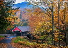 Essence Of New England - New Hampshire Autumn Classic by Thomas Schoeller