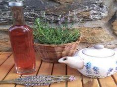 Jak udělat levandulový sirup   recept   jaktak.cz Preserves, Pickles, Food And Drink, Jar, Wine, Drinks, Bottle, Decor, Syrup