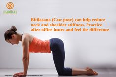 Bitilasana (Cow pose) can help reduce neck and shoulder stiffness. Practice after office hours and feel the difference. http://www.myvgoa.com