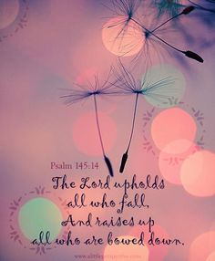 The Lord upholds all who fall, and raises up all who are bowed down. Psa 145:14 <3