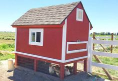 Majestic 75 Creative and Low-Budget DIY Chicken Coop Ideas for Your Backyard https://decoredo.com/5726-75-creative-and-low-budget-diy-chicken-coop-ideas-for-your-backyard/