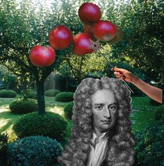 Мистер Ньютон