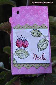 Box gefertigt mit Stanzbrett für Geschenktüten, Marienkäfer auf Blättern mit Stempeln von SU