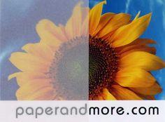 White Translucent Vellum Paper 29#. Laser.