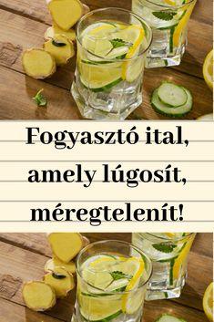 Fogyasztó mágikus ital, amely egyben lúgosítja és méregteleníti a szervezetedet! Kuroko, Fresh Rolls, Cantaloupe, Cucumber, Levek, Fruit, Ethnic Recipes, Nature, Food