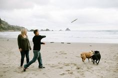 Engagement photos with dogs at Indian Beach at Ecola State Park. Pictures by Katy Weaver Photography