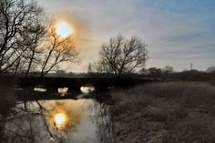 Aylestone Meadows,Leicester