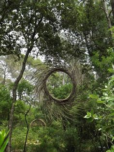 "Spencer Byles - Forest Sculptor"" This project represents my experiences throughout a twelve month period exploring the back regions of three unmanaged local forests making on site sculptures. The..."