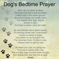 Dog's Prayer. So cute!