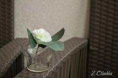 Эустома и веточка эвкалипта из фоамирана  #эустома #изфоамирана #ручная работа #эвкалипт #ручнаяработа #handmade