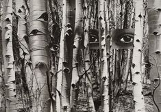 In Search Of Times Past, 1959 by Herbert Bayer on Curiator, the world's biggest collaborative art collection. Herbert Bayer, Photomontage, Pablo Picasso, Amédéo Modigliani, Aspen House, Inspiration Art, Collage Artists, Collages, Wassily Kandinsky