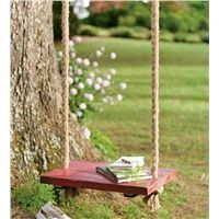Unique Personalized Wooden Swing