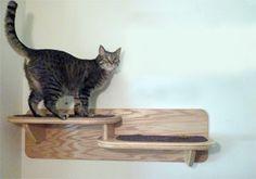 Wall Mounted Double Cat Shelf