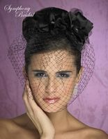 Birdcage Veil... I'd have this at the reception