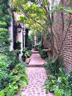 A little trip to a true southern gem of the south-Charleston, and it's charming labyrinth of courtyard gardens.