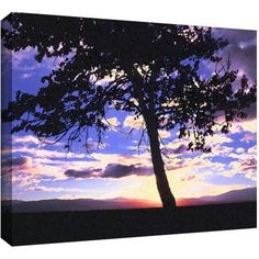 Dean Uhlinger Teton Meadow Sunrise Gallery-Wrapped Canvas, Size: 36 x 48, Blue