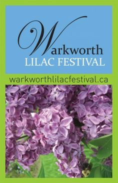 A thirty day celebration of the lilac showcasing many rare lilac varieties. The Festival is held in Warkworth, Ontario, just 90 minutes east of Toronto. Lilac Varieties, Beef Tips, Food Photography Tips, I Want To Travel, Green Day, Upcoming Events, Food Network Recipes, Gardening Tips, Ontario
