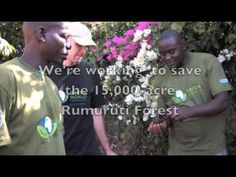 The Green World Campaign is reforesting the world while helping people make a living from newly planted resources. We love that!