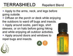 Homemade Bug Spray | Essential Oils Teacher