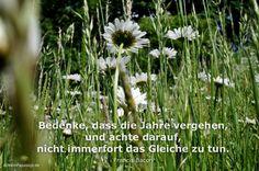 Mein Papa sagt... Bedenke, dass die Jahre vergehen, und achte darauf, nicht immerfort das Gleiche zu tun. Francis Bacon #Zitate #deutsch #quotes Weisheiten & Zitate TÄGLICH NEU auf www.MeinPapasagt.de