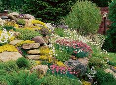 how to design garden with rocks and flowers