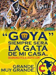 d40de9e7d8a9f591c0feee46eaab019b pumas meme memes de burlas hacia argentina tras perder la final futbol,Memes America Pumas 2016